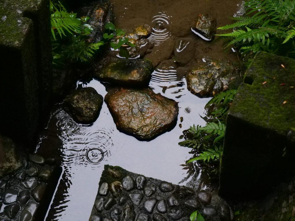 浜名湖の龍潭寺の庭