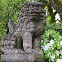 近所の神社の狛犬