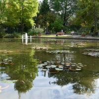 フラリエの池