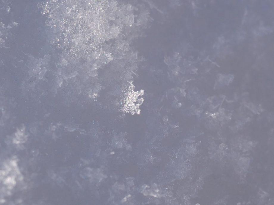 南富良野の雪の結晶
