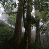 神社仏閣の杜