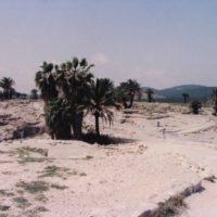 イスラエルのメギドの丘 聖書で、世界最終戦争(ハルマゲドン)が起きると預言?されている