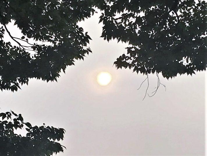 ライオンズゲート、8月8日の太陽