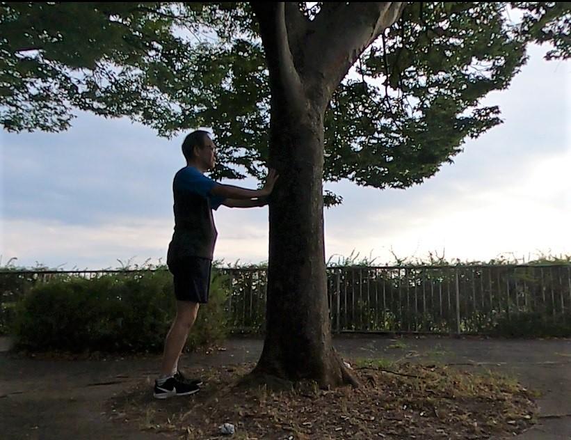 樹木に寄り添う