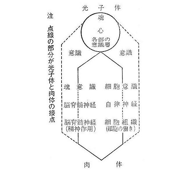 光子体(高次元の肉体、オーラ)と肉体(三次元の体)