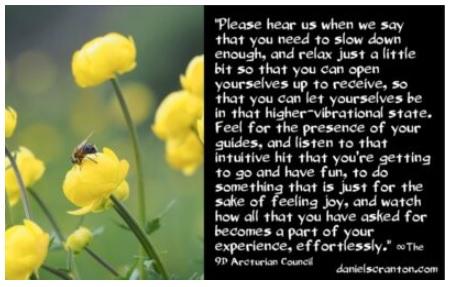 Raise Your Vibration & Receive