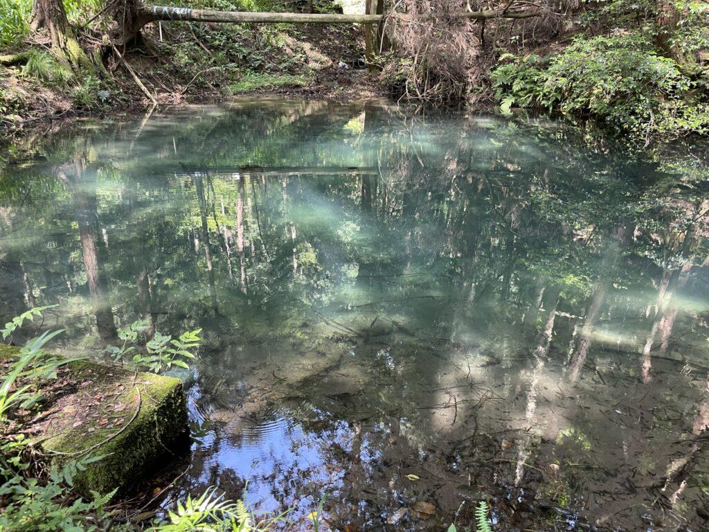不思議な池の写真