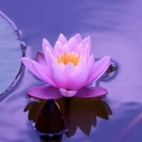 more-effective-spiritual-practices-アイコン
